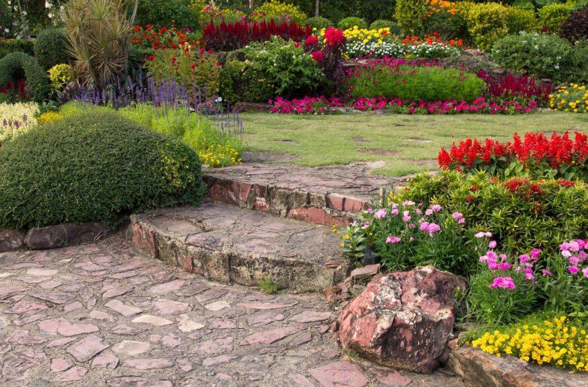 Co obejmuje ubezpieczenie roślinności ogrodowej