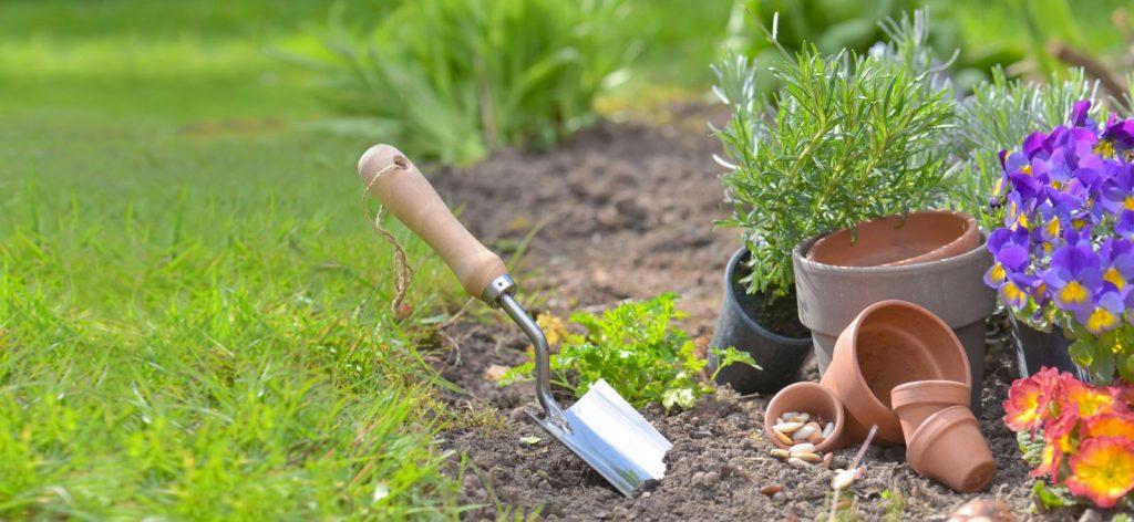 Ubezpieczenie roślinności ogrodowej